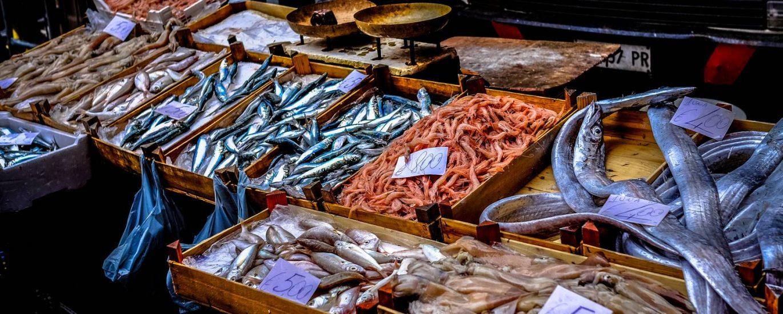 street market market fish fish market